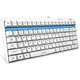 ARION Rapoo V500 Full Keys Programmable PRO Mechanical Gaming Keyboard With 2mm Trigger Stroke and Original Factory MX Yellow Switches for Laptops Desktops PC - WHITE [並行輸入品]
