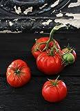 Organic 506 Bush Tomato ~25 seeds