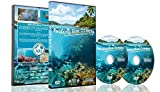 Underwater DVD - Relaxing Blue Oceans