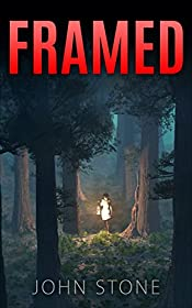 Framed (Detective Logan Mysteries #4)