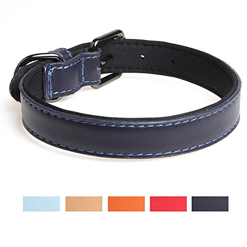 Leepets Neoprene Padded Leather Dog Collar for Small Medium Dog Comfort & Soft Puppy Collar with Adjustable Metal Muckle, 3/4 Inch Wide, Navy