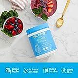 Vital Proteins Collagen Peptides Powder - Pasture