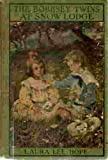 The Bobbsey Twins at Snow Lodge (Bobbsey Twins, #5)