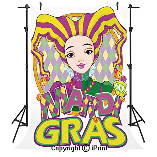 Mardi Gras Photography Backdrops,Carnival Girl in Harlequin Costume and Hat Cartoon Fat Tuesday Theme,Birthday Party Seamless Photo Studio Booth Background Banner 3x5ft,Yellow Purple Green -