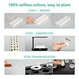 Hydroponics Growing System - Support Indoor