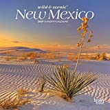 New Mexico Wild & Scenic 2020 7 x 7 Inch Monthly Mini Wall Calendar, USA United States of America Southwest State Nature