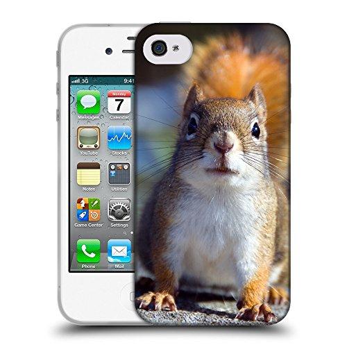 Just Phone Cases Coque de Protection TPU Silicone Case pour // V00004165 Fixant écureuil peur // Apple iPhone 4 4S 4G