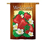 Cheap Breeze Decor FT-H-117023-IP Welcome Strawberries Garden Flag, 28″ x 40″, Multicolor