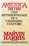 America Now : The Anthropology of a Changing Culture, Harris, Marvin, 067143148X