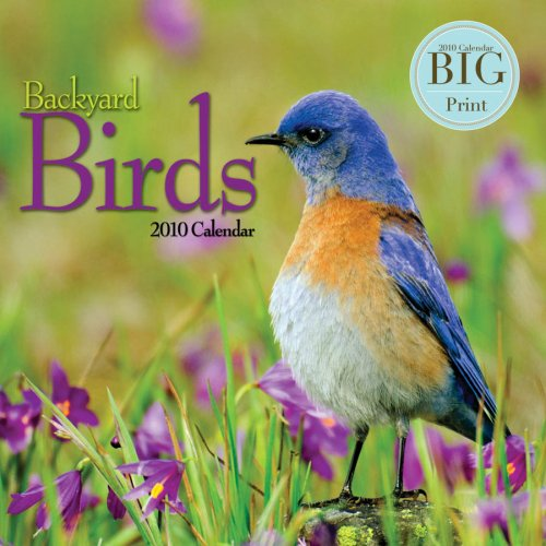 Backyard Birds - 2010 Big Print Wall Calendar ()