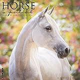 Horse: A Portrait 2020 Wall Calendar