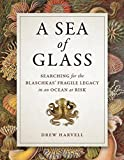 img - for A Sea of Glass: Searching for the Blaschkas' Fragile Legacy in an Ocean at Risk (Organisms and Environments) book / textbook / text book