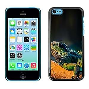 linJUN FENGYOYO Slim PC / Aluminium Case Cover Armor Shell Portection //Cool Majestic Iguana Lizard //Apple iphone 4/4s