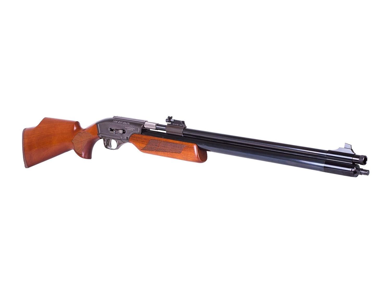 Sam Yang Recluse Air Rifle air rifle