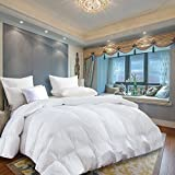 NP 1200 Thread Count GOOSE DOWN Comforter , Queen Size, 1200TC - 100% Egyptian Cotton Cover, 750 Fill Power, 55 Oz Fill Weight, White Color