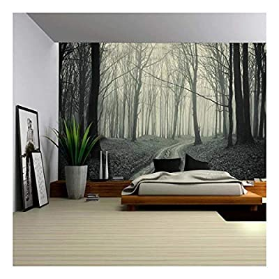 Vinatge Mural of a Worn Out Pathway in a Dried Out Forest - Wall Mural, Removable Sticker, Home Decor - 66x96 inches
