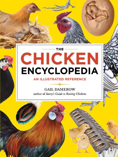 Pdf Math The Chicken Encyclopedia: An Illustrated Reference