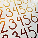 Modern Style Die Cut Vinyl Numbers (2 Inch Metallic Copper)