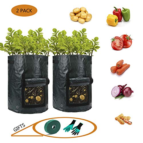 AURSINC Garden Grow Bag with Flap and Handles Potato Grow Planter Pots for Tomato Vegetables with Garden Genie Gloves and Plant Tie (10 Gallon)
