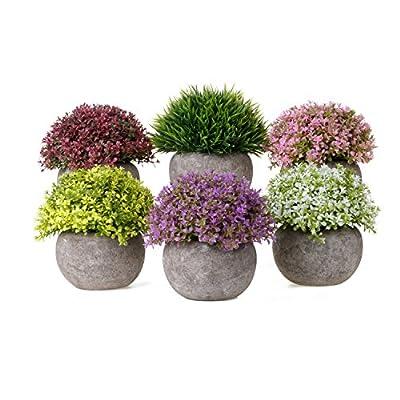 T4U Fake Artificial Succulent Potted Plants, Small Lifelike Cactus Plant Pots Set Decorative Ornament for Home Office Desktop Window Table Wedding Birthday Decor Parent Mom
