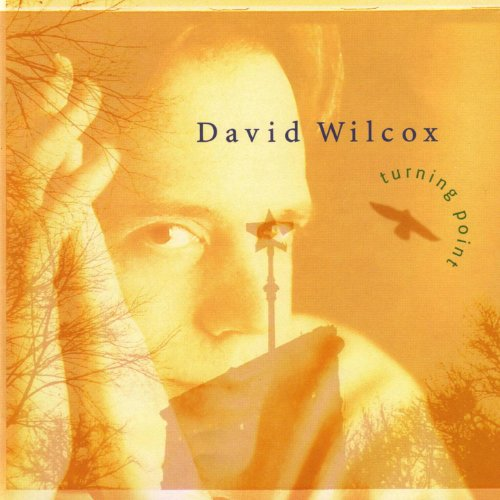 David Wilcox-Turning Point-CD-FLAC-1997-FLACME Download