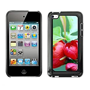 Soft Silicone Rubber Case Hard Cover Protective Accessory Compatible with Apple IPod Touch 4 - Plant Nature Forrest Flower 73
