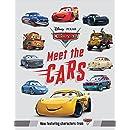 Meet the Cars