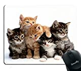 Smooffly cats Mouse pad for computers, Kittens Family Cats Mouse Pad