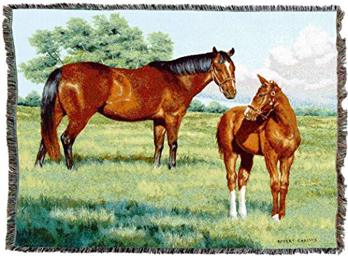 Pure Country Weavers | My Pride Mare and Foal Horses Woven Tapestry Throw Blanket with Fringe Cotton USA 72x54 ()