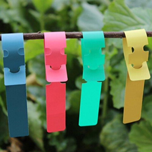 Mr-Label 100pcs Wrap Around Plastic Plant Nursery Garden Labels Tags - 2x20cm