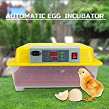 24 Egg Incubator Fully Automatic Digital LED Turning Chicken Duck Eggs Poultry