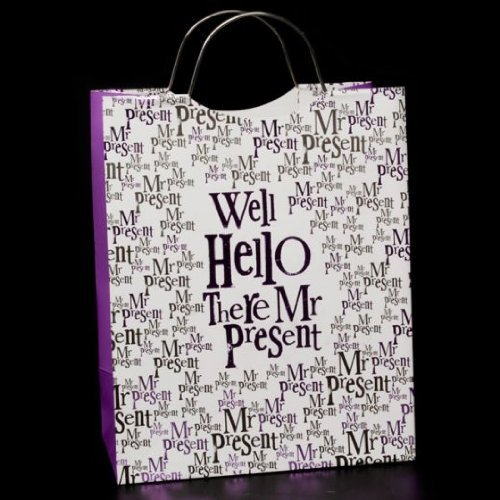 Bright Side Medium Gift Bag - Well Hello There Mr Present