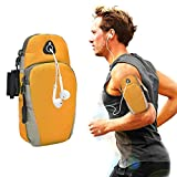 Baiyu Unisex Running Arm Bags Pouch Portable Armband Adjustable Arms Package Mobile Cell Phone Wrist Wallet Band Iphone 6plus Case Holder for Outdoor SportS Jogging Trekking Cycling (Orange)