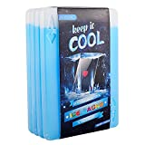 OICEPACK Ice Packs for Lunch Box - Freezer Ice Packs - Slim Long Lasting Cool Packs for Lunch Bags and Cooler, Set of 4, Poker Design
