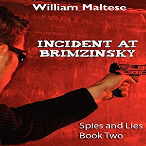 Incident at Brimzinsky Audiobook