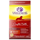 Wellness Complete Health Natural Dry Senior Dog Food, Chicken & Barley, 5-Pound Bag Review