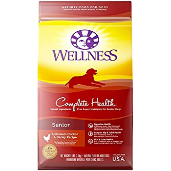 Amazon Com Wellness Complete Health Natural Dry Small