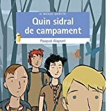Quin Sidral De Campament (El Micalet Galàctic)