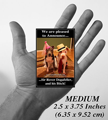 [SIR DOGAFELLER- 1 Medium fridge magnet 3.75X2.5 inches (9.525 x 6.35 cm), funny humorous meme decorative magnetic sign plaque photo, Pit bull couple in dog costumes.] (Stoner Costume Diy)