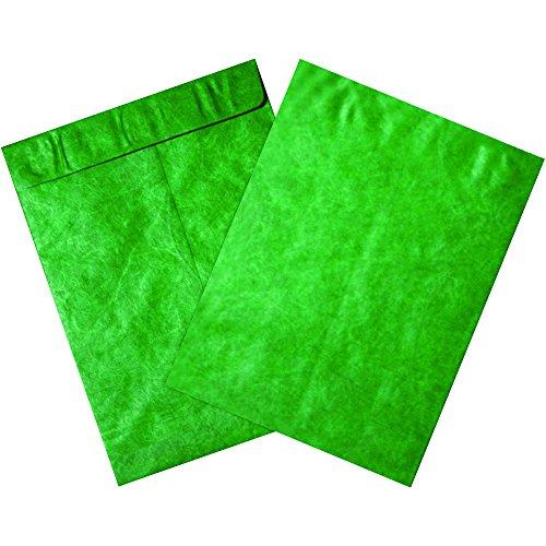 BOX USA BTYC1013G Tyvek Envelopes, 10'' x 13'', Green (Pack of 100) by BOX USA