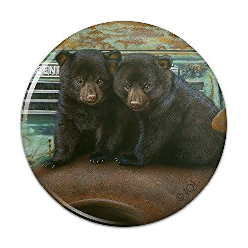 Vintage Pinback Button - Black Bear Cubs on Vintage Car Pinback Button Pin Badge - 3