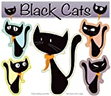 Black Cats Magnet Pack