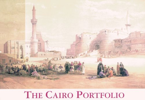Download The Cairo Portfolio by David Roberts (1999-09-15) pdf