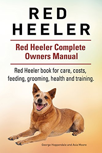 Red Heeler Dog  Red Heeler dog book for costs, care, feeding, grooming,  training and health  Red Heeler dog Owners Manual