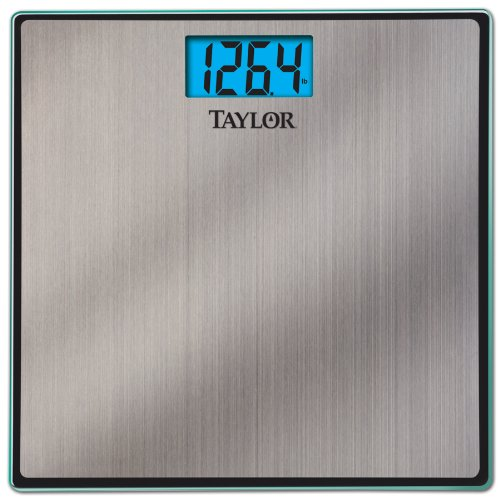 (Taylor Precision Products Stainless Steel Electronic Lithium Scale)