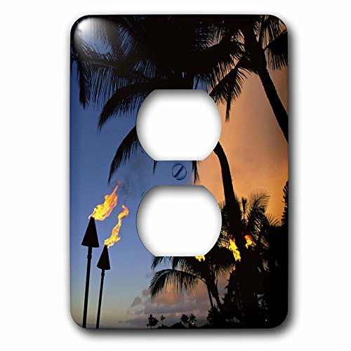 3dRose LLC lsp_89716_6 Tiki Torches Hawaii Us12 Dpb1421 Douglas Peebles 2 Plug Outlet Cover by 3dRose