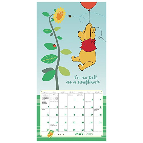 Book cover from Winnie the Pooh Wall Calendar (2019) by Day Dream