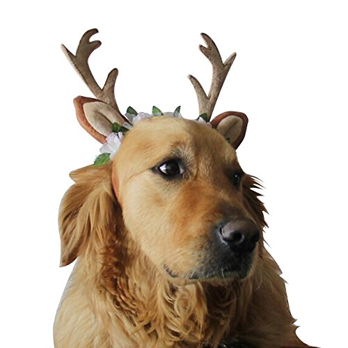 BUYITNOW Pet Antlers Headband Reindeer Ears Flowers Headwear Christmas Cosplay Costume for Dogs - Pet Antlers Costume