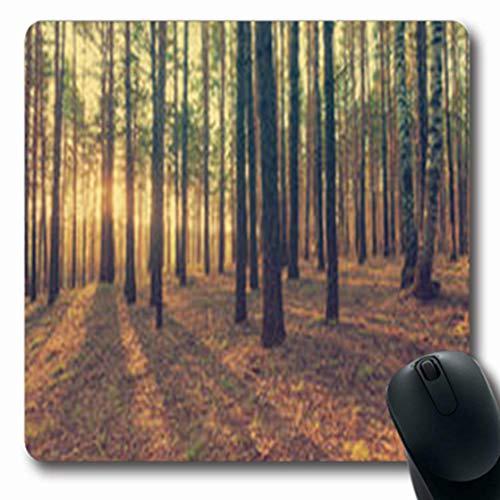 Pandarllin Mousepads Sunset Woods Retro Film Filtered Nature Vintage Dark Oblong Shape 7.9 x 9.5 Inches Oblong Gaming Mouse Pad Non-Slip Rubber ()