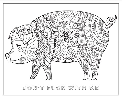 Chill The F Ck Out A Swear Word Coloring Book Import It All